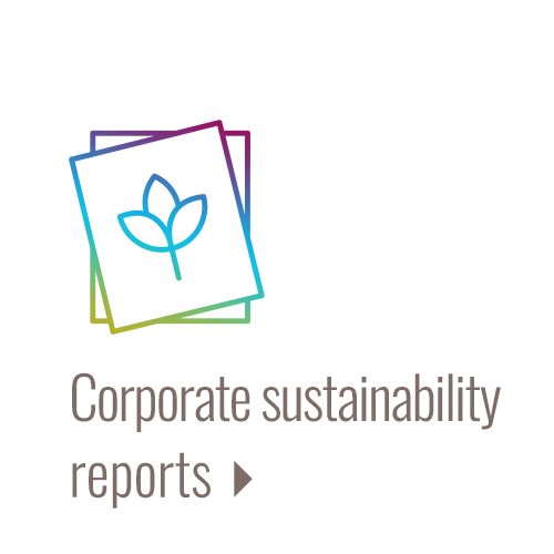 Investor sustainability reports