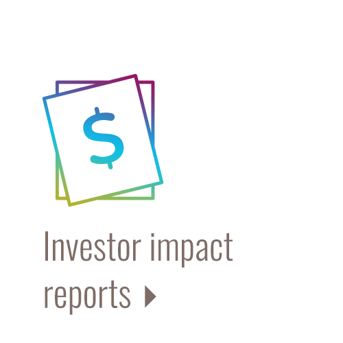 Investor impact reports